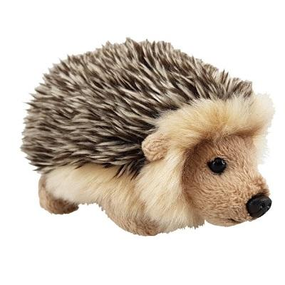antics-wildlife-mini-hedgehog