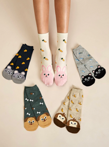 Socks Animals Multiple Choice