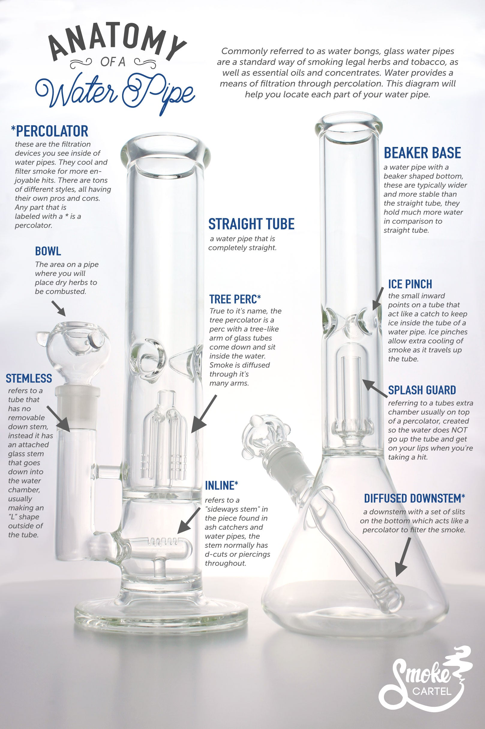 Anatomy of a Water Pipe Infographic