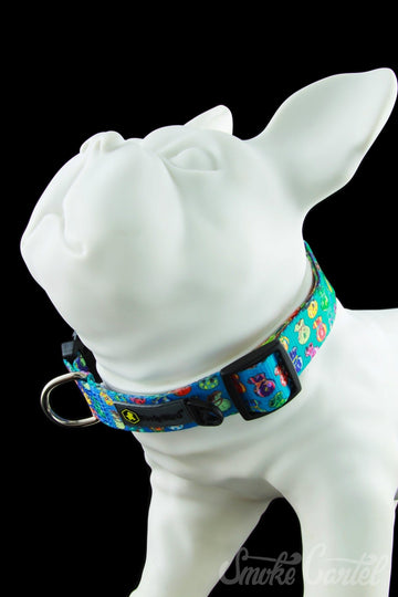 Large / MoneyBag Collector - HeadyPet OG Collar - HeadyPet - - HeadyPet OG Collar