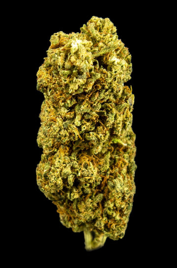 Bammmer Lifter CBD Flower - Bammmer Lifter CBD Flower