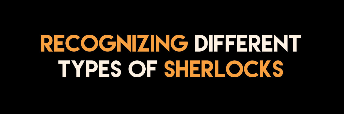 Recognizing Different Types of Sherlocks - An Infographic