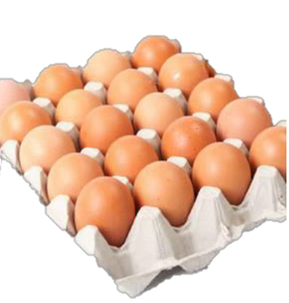 Albert's Eggs Jumbo Tray 20s