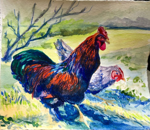 Rooster in watercolor
