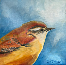 Load image into Gallery viewer, Carolina Wren