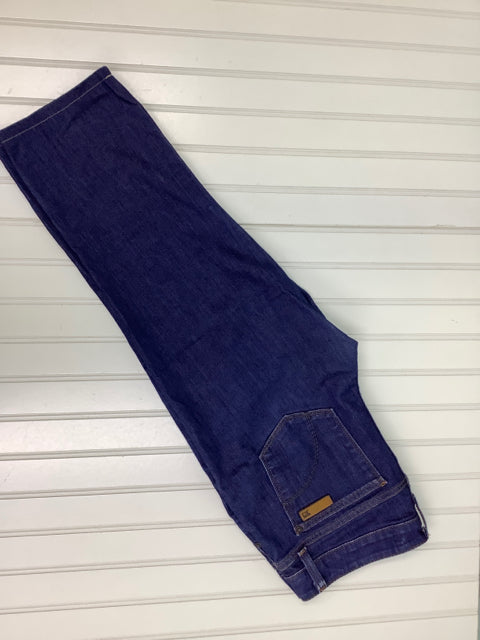 Joe's Jeans Chelsea Fit Corey Wash Capri 2D
