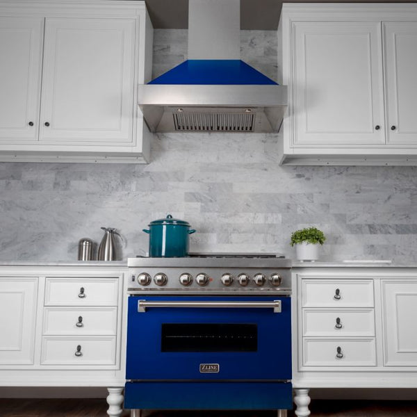 36 IN. PROFESSIONAL DUAL FUEL RANGE IN DURASNOW® STAINLESS STEEL WITH BLUE GLOSS DOOR By Zline - Ace home goods