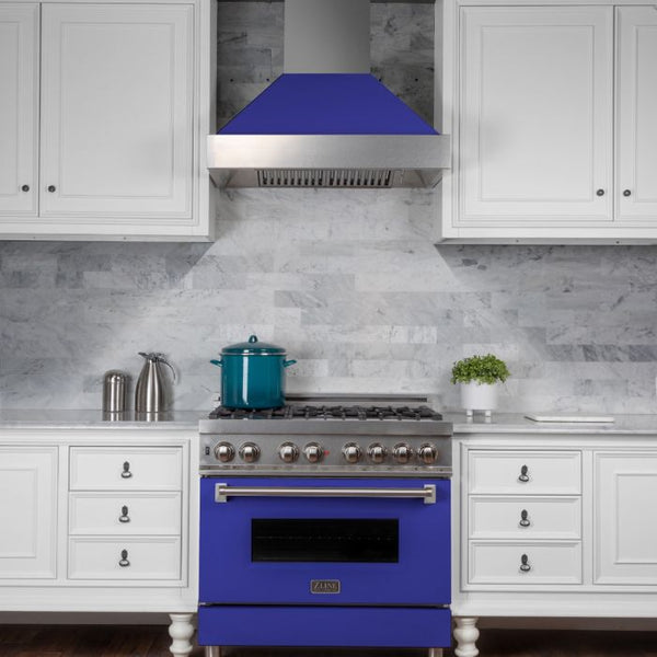 36 IN. PROFESSIONAL DUAL FUEL RANGE IN DURASNOW® STAINLESS STEEL WITH BLUE MATTE DOOR By Zline - Ace home goods