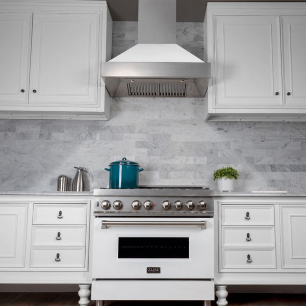 36 IN. PROFESSIONAL DUAL FUEL RANGE IN DURASNOW® STAINLESS STEEL WITH WHITE MATTE DOOR By Zline - Ace home goods