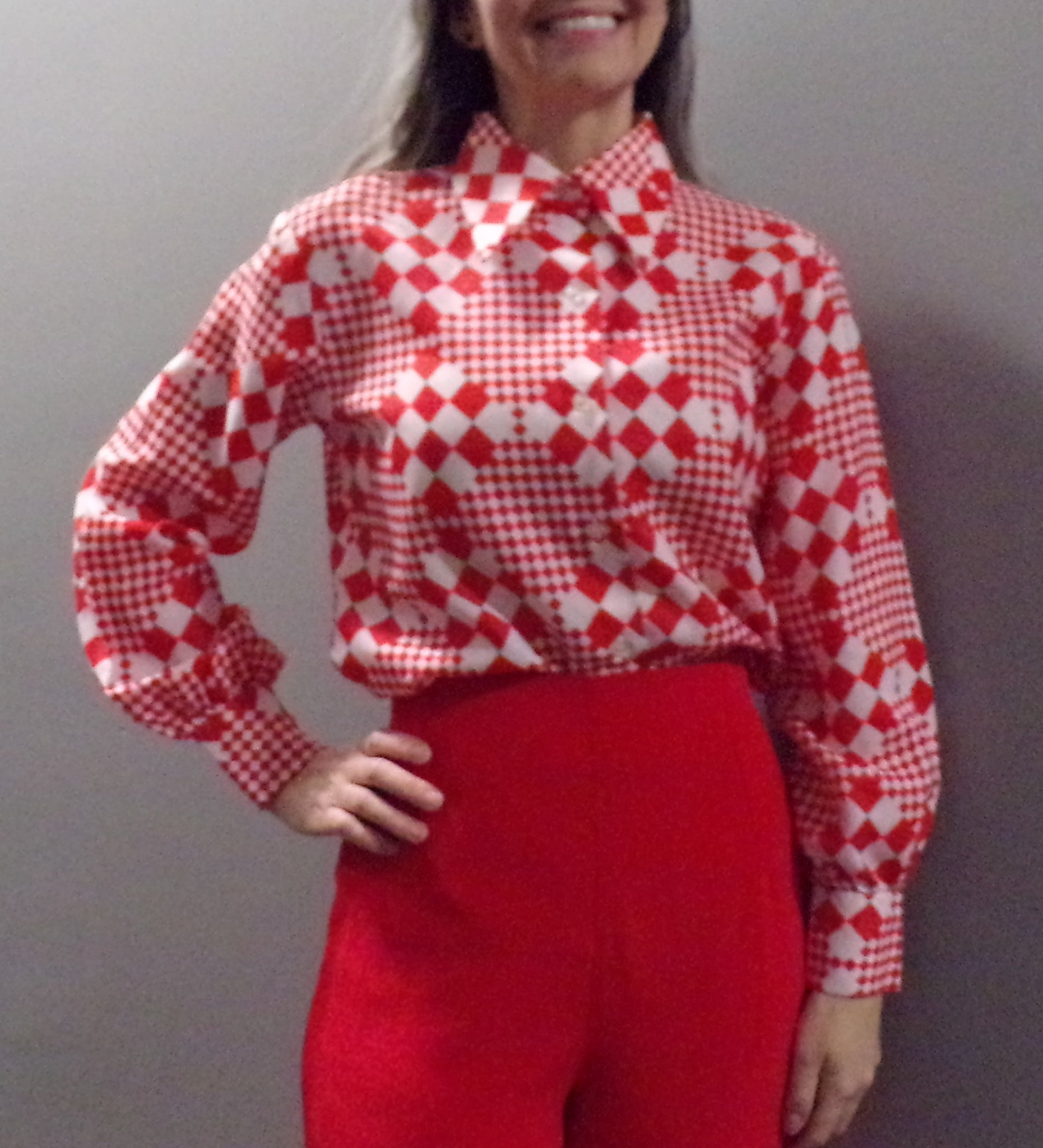 RED CHECKED BLOUSE butterfly collar 1970's button-down S M (H4)