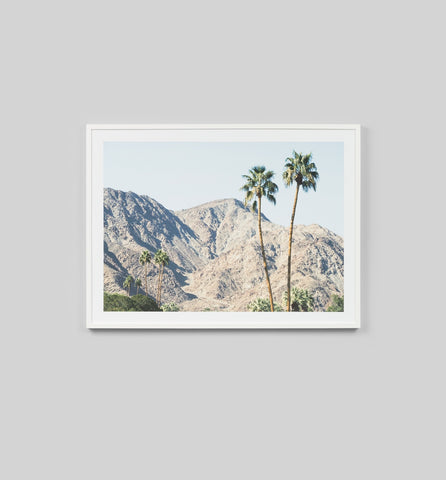 Palm Hills Framed Print