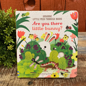 Are You There Little Bunny? Book