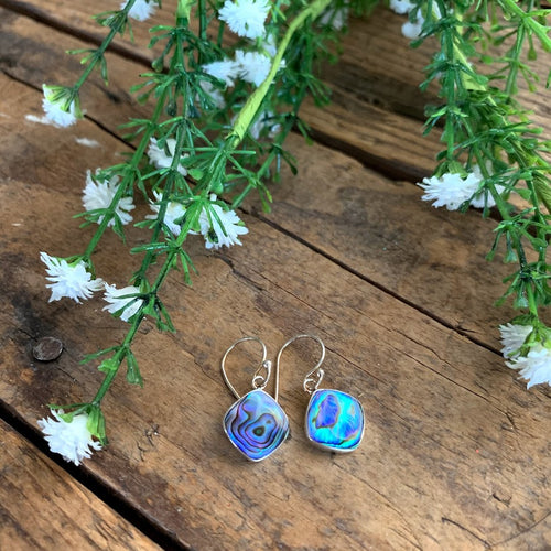 Sterling Silver Abalone Diamond Earrings - Apothecary Gift Shop
