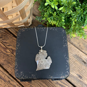 Large Petoskey Stone Michigan Pendant