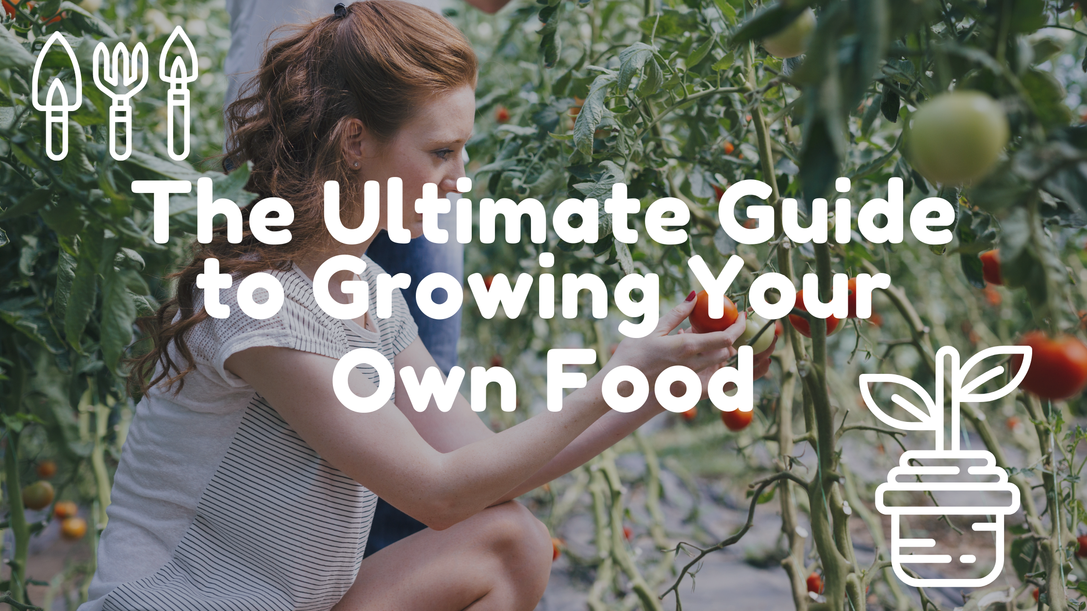 The Ultimate Guide to Growing Your Own Food banner