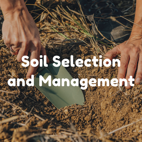 Soil Selection and Management