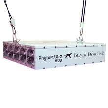 Load image into Gallery viewer, Black Dog LED PHYTOMAX-2 600 LED GROW LIGHTS