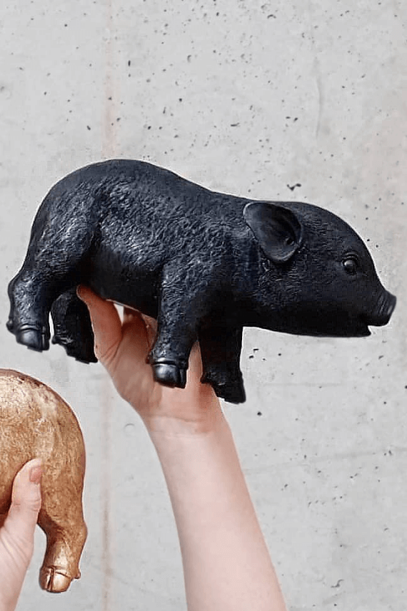 Someone holding a Black Resin Pig Money Box