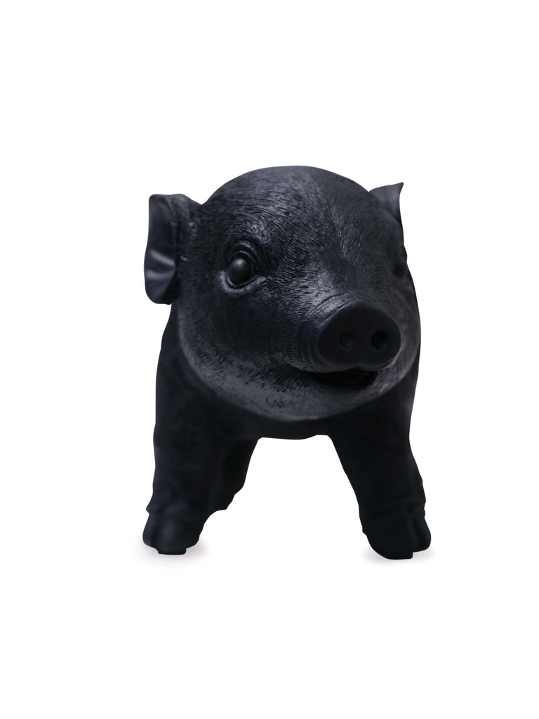 Black Resin Pig Money Box (Front)