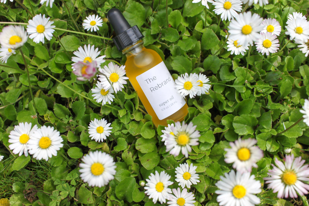 The Rebrand Sustainable Skincare Organic Facial Oil