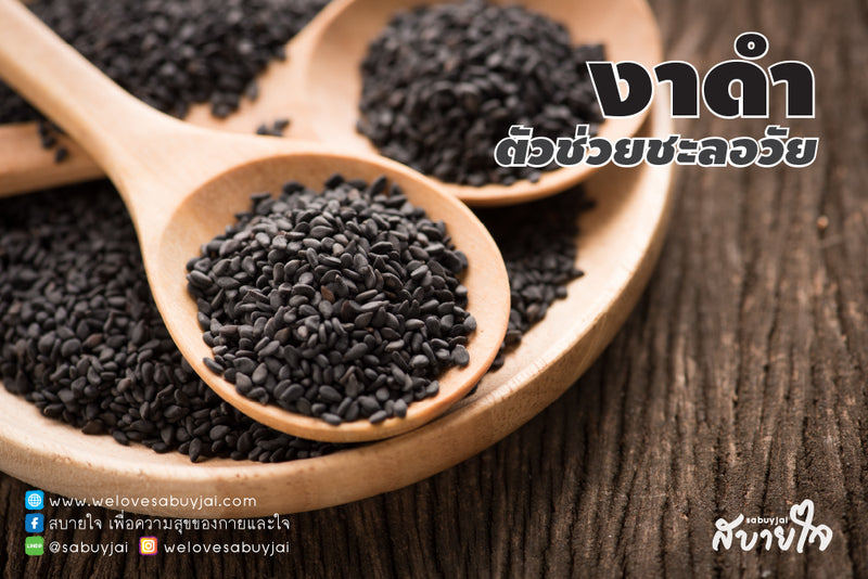 งาดำ (Black Sesame)  | Health benefit of Black Sesame Seeds