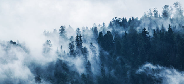 How to control indoor air quality for wildfire season