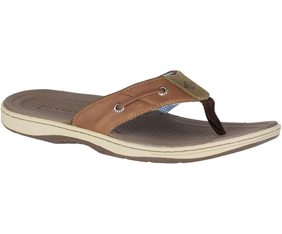 MENS SPERRY BAITFISH FLIP-FLOPS