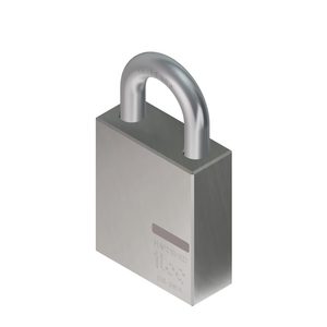 iLOQ Padlock With 11mm Shackle