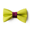 Purple and Citrus Green satin dog bow tie