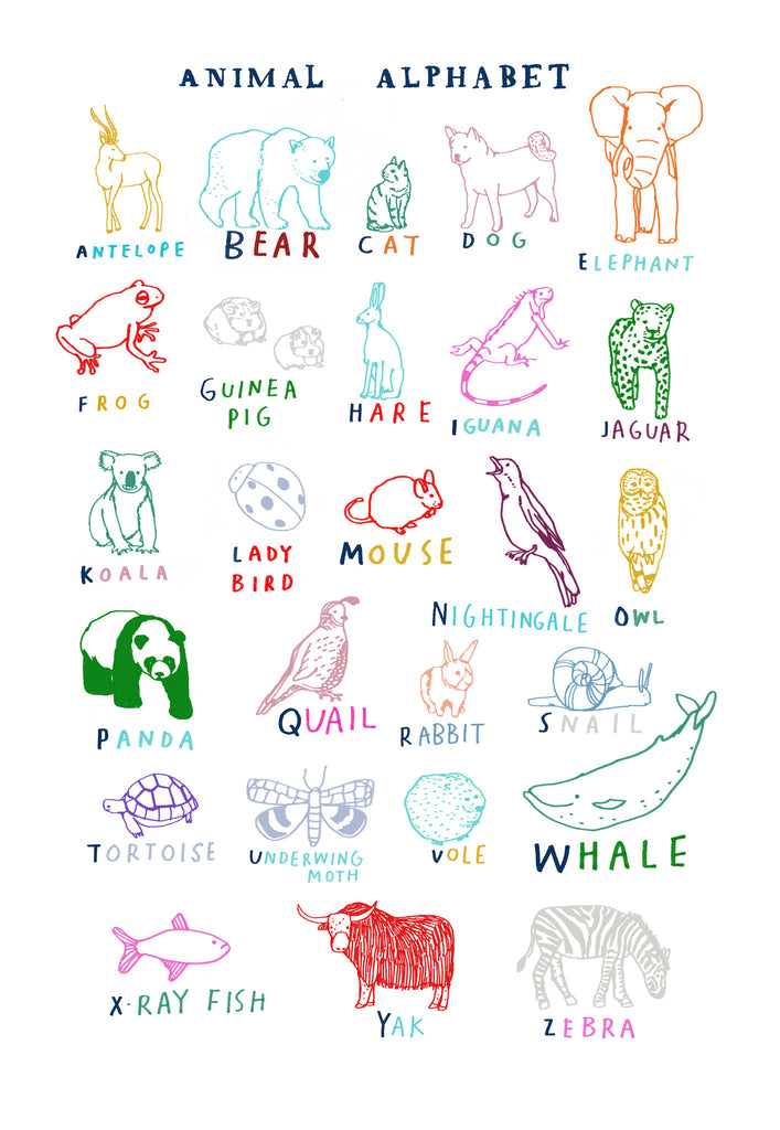 Hanna Melin 'Animal Alphabet'