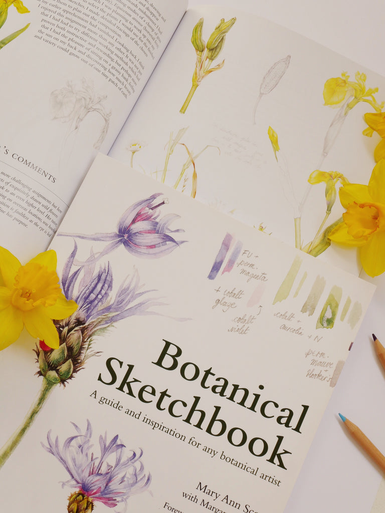 Botanical Sketchbook - Mary Ann Scott with Margaret Stevens