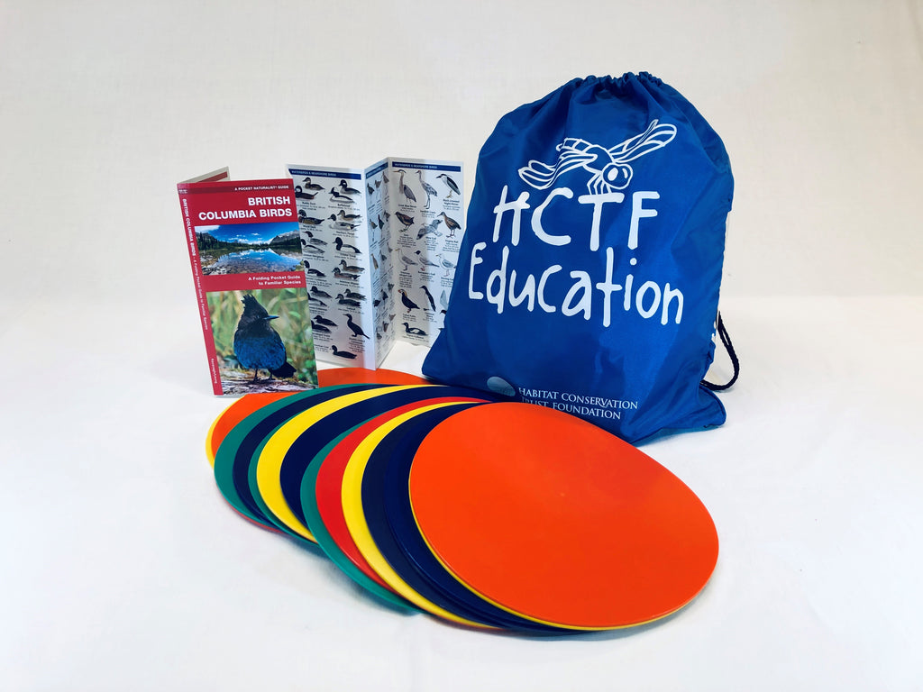 Migration Headache Activity Bag