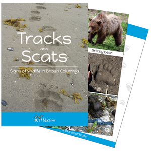 Tracks and Scats Field Identification Cards