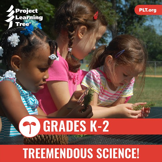 Treemendous Science for K-2 Online Workshop and E-unit