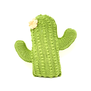 Cactus Pillow - Crochet City