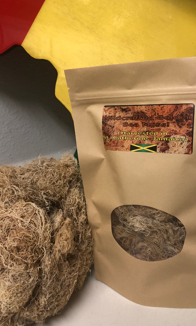 Wildcrafted Golden Sea Moss! (Harvested in St. Catherine's Jamaica)