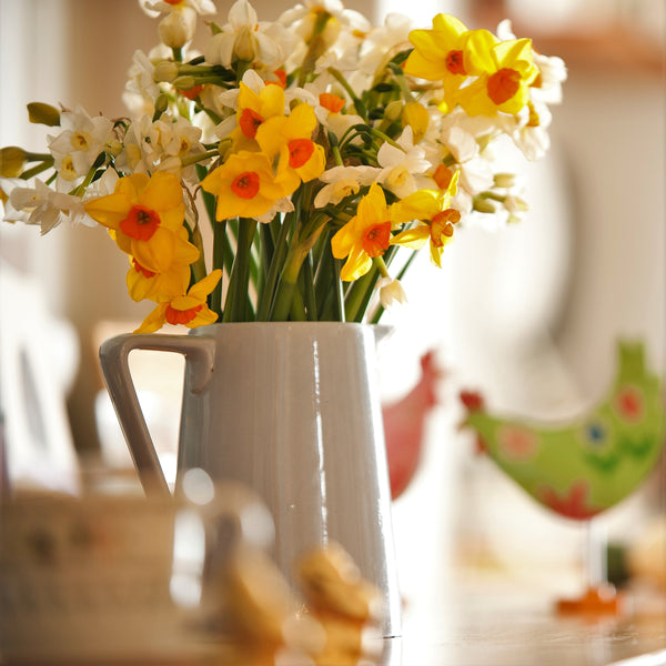 Pale blue ceramic jug of mixed scented narcissi, with easter chickens
