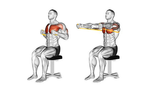 Resistance band seated chest press - Haryzona
