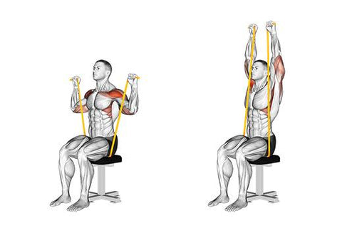 Resistance band seated shoulder press - Haryzona