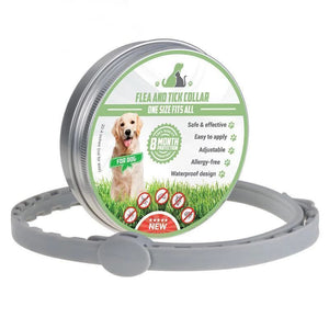 Guard Flea & Tick Collar For Dogs