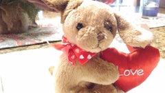 Bearington - Lil Valentines 4 Styles- Monkey, Frog, Puppy, Bear 5 Inches and Retired