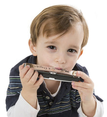 Melissa & Doug - Beginner Extra-Large Metal Harmonica [Home Decor]- Olde Church Emporium