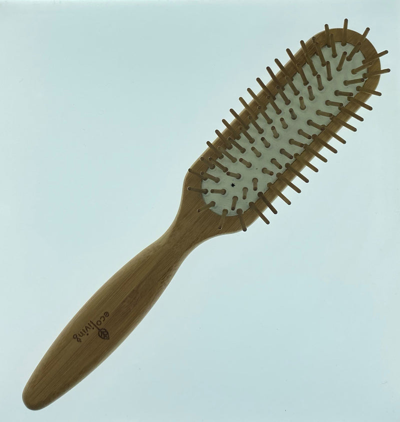 Ecoliving Large Hairbrush