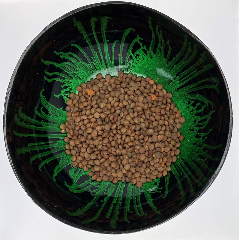 bean,dried,lentil,pea,Pulse,seed