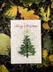 5 x Plantable Xmas Card Merry Tree Star