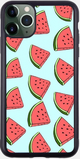 Watermelon Slices Case!