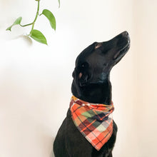 Load image into Gallery viewer, Dog Bandanas