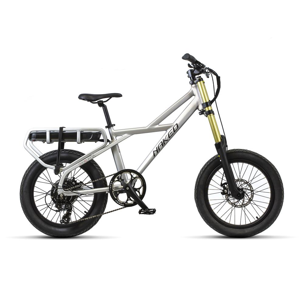 E-bike Ekletta - Naked Silver