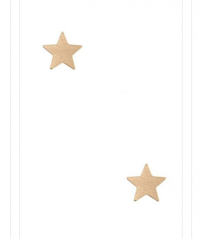 Brooklyn Star Stud Earrings - The Catalina Rose