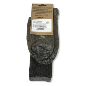 Women's Wool-Blend All Weather Camel Crew Socks - Crabapple